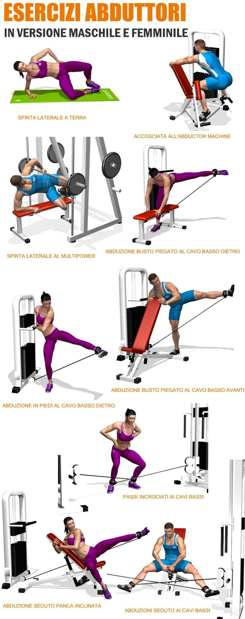 nuovi-esercizi-abduttori-evolutionfit