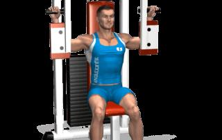 fine chiusure pectoral machine allenamento pettorali