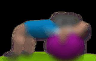 allenamento pettorali spinte manubri stability ball