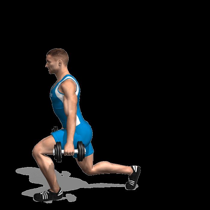 allenamento quadricipiti affondi frontali manubri fine