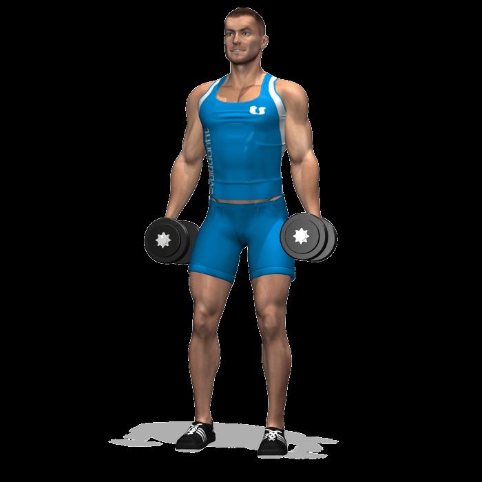 allenamento quadricipiti squat 2 manubri inizio