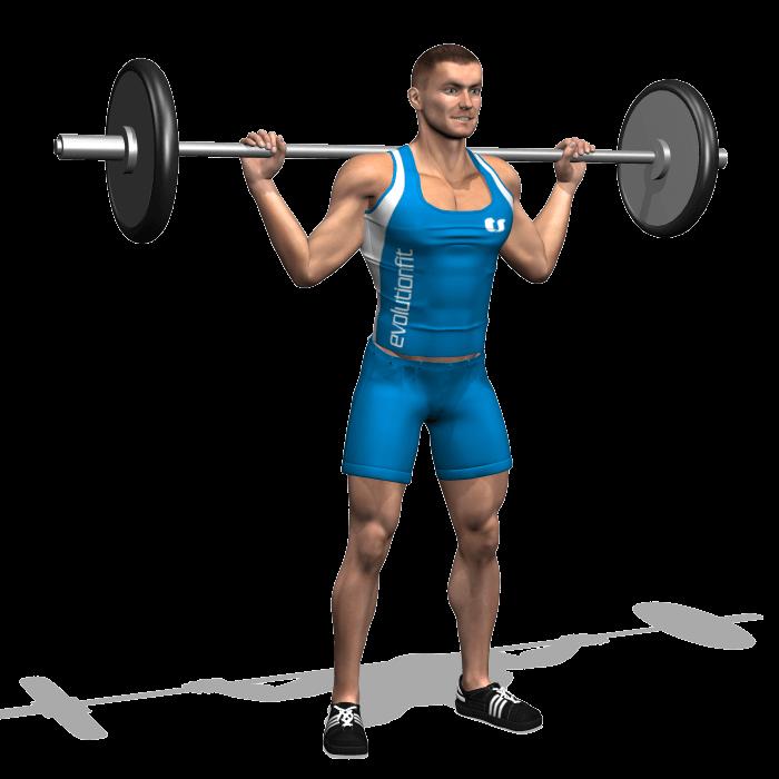 allenamento quadricipiti squat bilanciere parallelo inizio