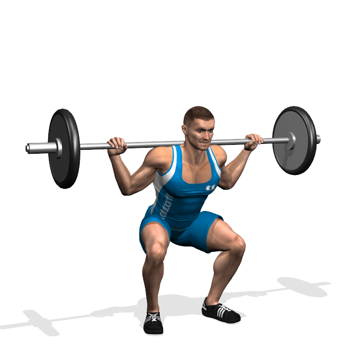 allenamento quadricipiti squat bilanciere parallelo fine