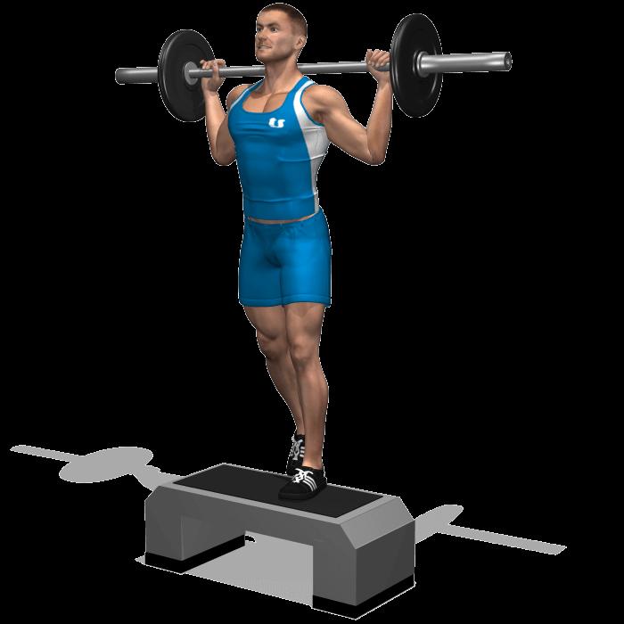 allenamento quadricipiti step up bilanciere fine