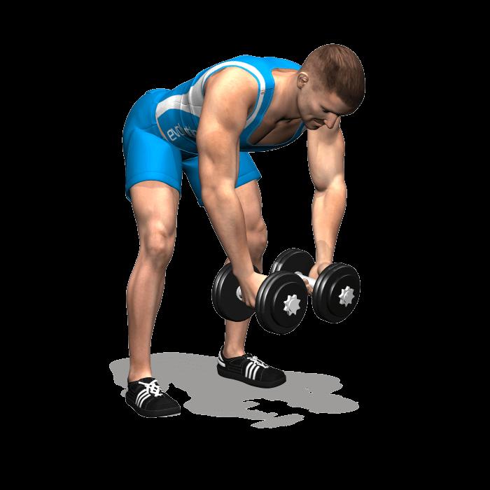 allenamento spalle alzate laterali manubri busto 90 inizio