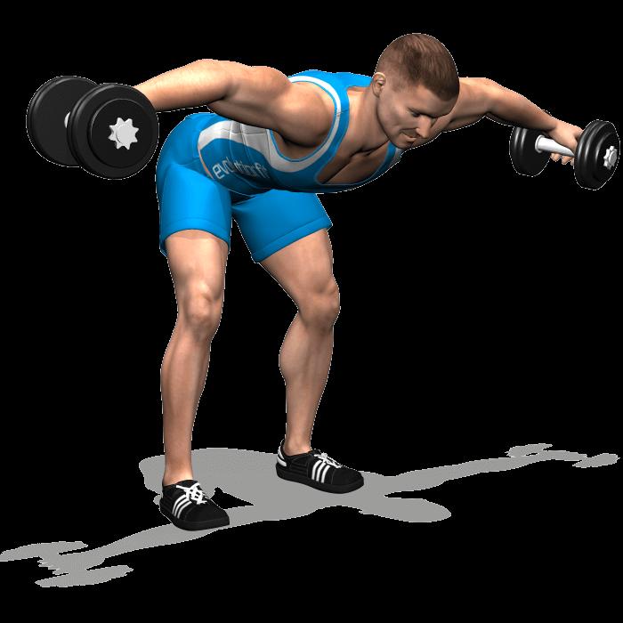 allenamento spalle alzate laterali manubri busto 90 fine