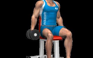 allenamento spalle alzate laterali manubri seduto inizio