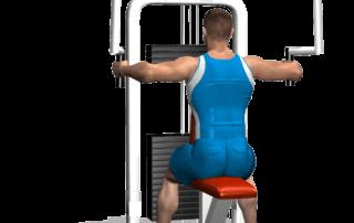 allenamento spalle aperture peck fine