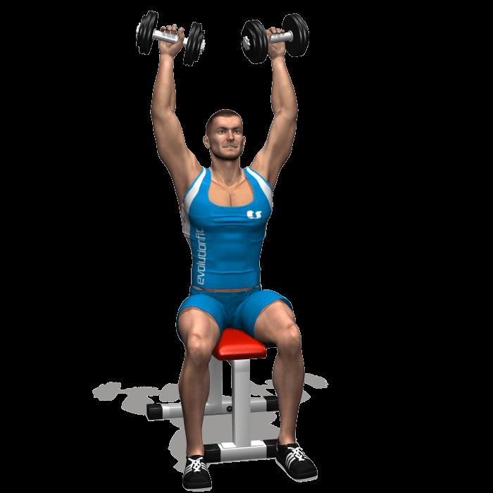 allenamento spalle arnold press inizio