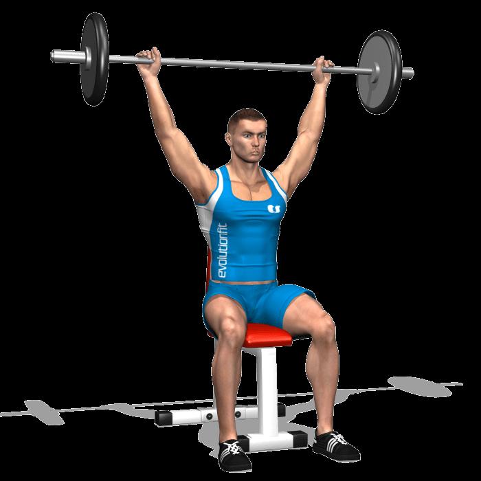 allenamento spalle lento dietro seduto bilanciere fine