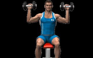 allenamento spalle spinte seduto manubri inizio