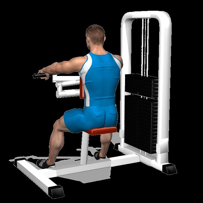 allenamento spalle trazioni upper back inizio