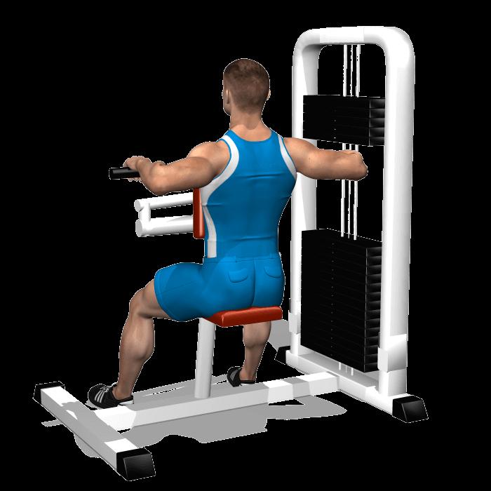 allenamento spalle trazioni upper back fine
