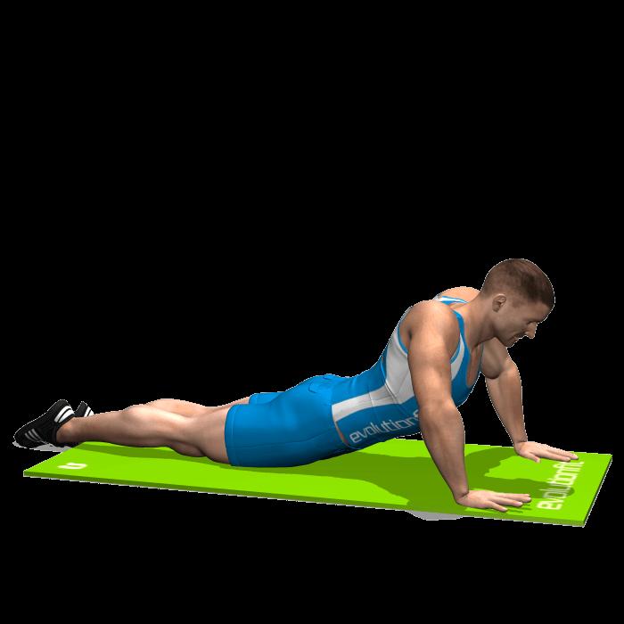 allenamento stretching allungamento addominali sdraiato prono a terra inizio