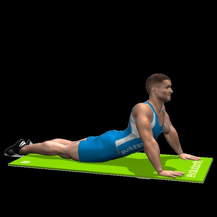 allenamento stretching allungamento addominali sdraiato prono a terra fine