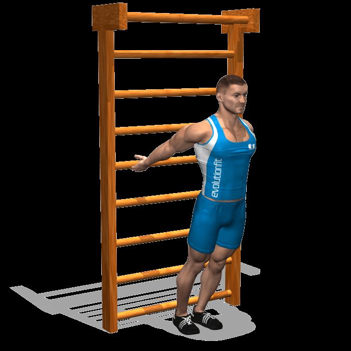 allenamento stretching allungamento alla spalliera fine
