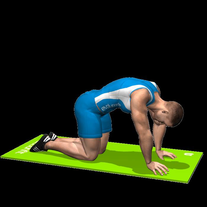 allenamento stretching posizione del gatto fine
