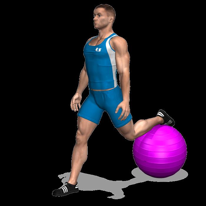 allenamento quadricipiti squat bulgaro fitball inizio