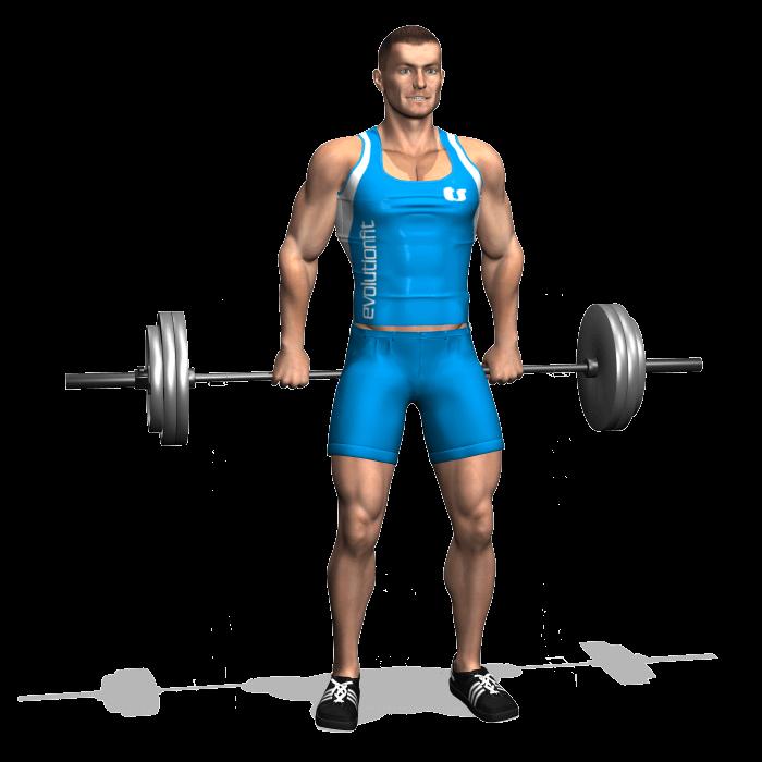allenamento trapezi shrugs bilanciere dietro in piedi inizio